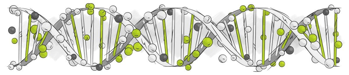 Open Box DNA